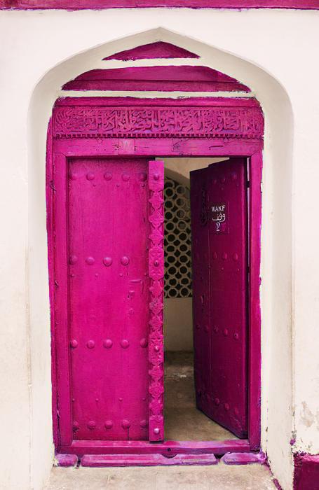 Pink door - India via sash windows London