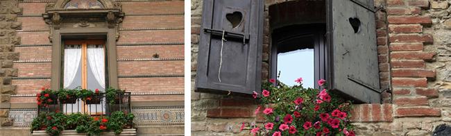 Windows and flowers around the world
