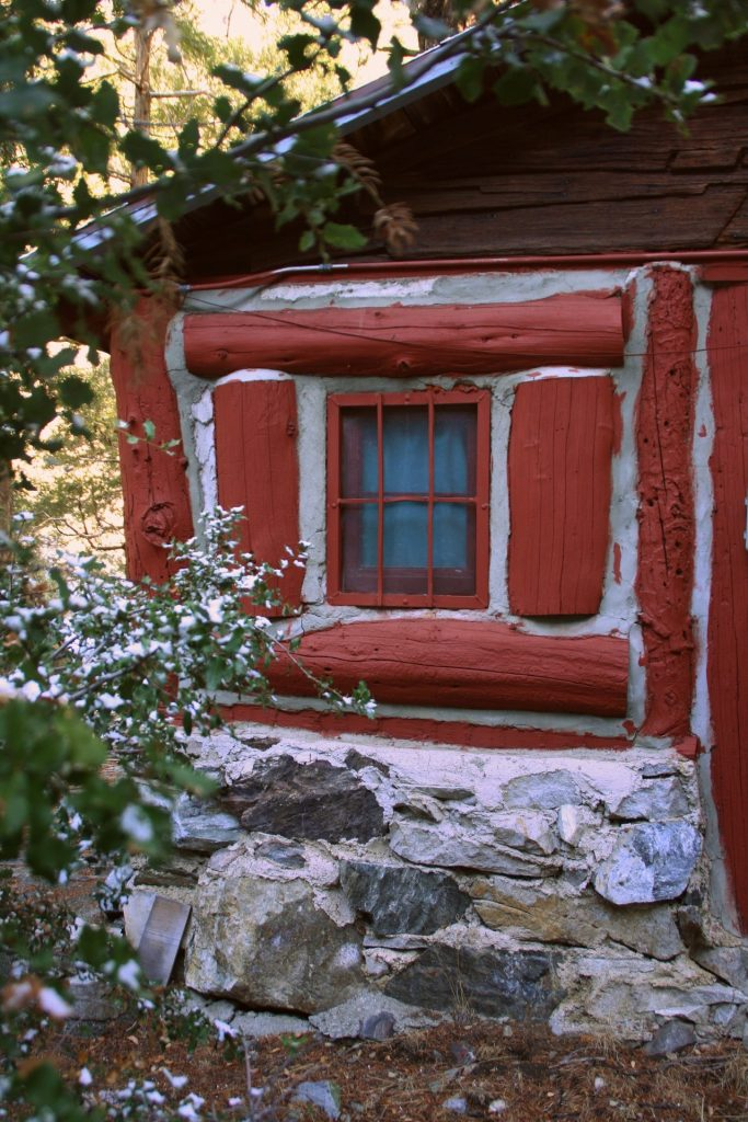 windows-and-flowers-red