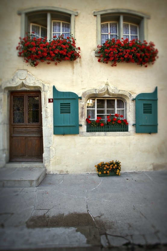 windows and flowers red and turquoise
